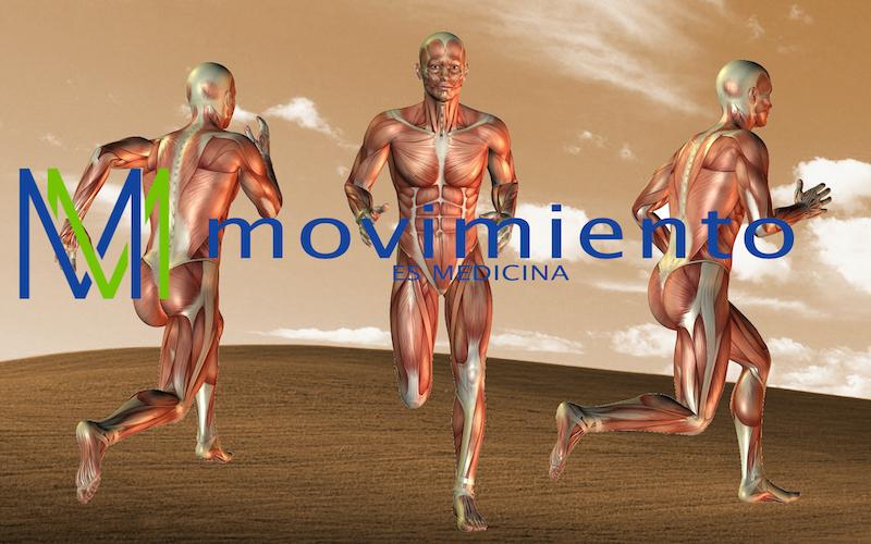 Movimiento es medicina